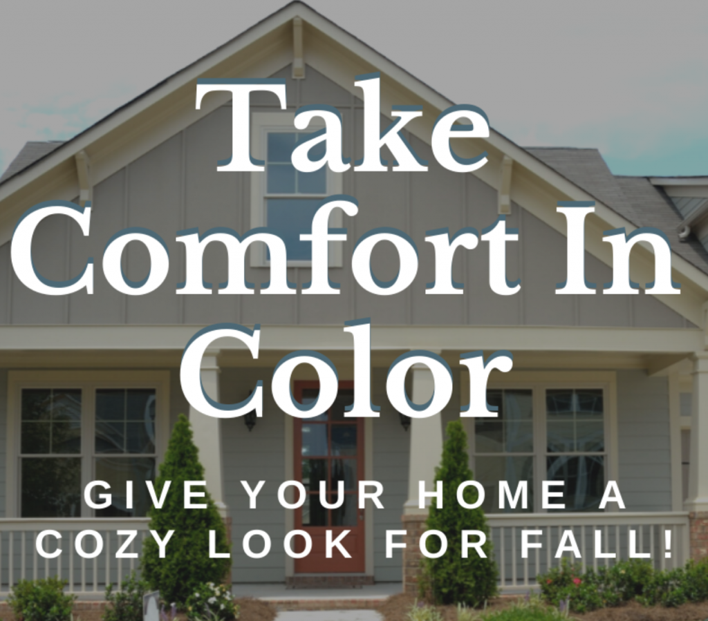 take comfort in color